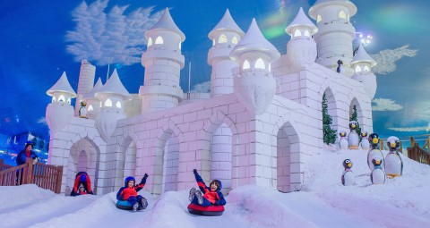 Imagem representativa: Parque Temático Snowland